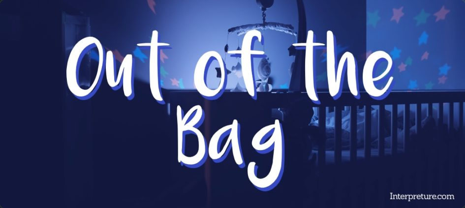 out of the bag poem analysis and notes interpreture english revision
